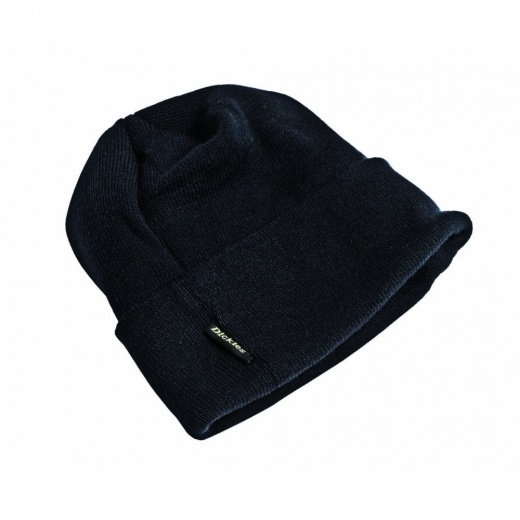 Dickies Thinsulate Watch Cap / Hat